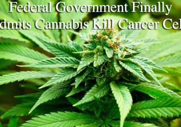 Big Pharma Finally Admits Cannabis Cures Cancer