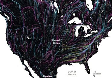 Beautiful Map Shows he Future of Animal Migration